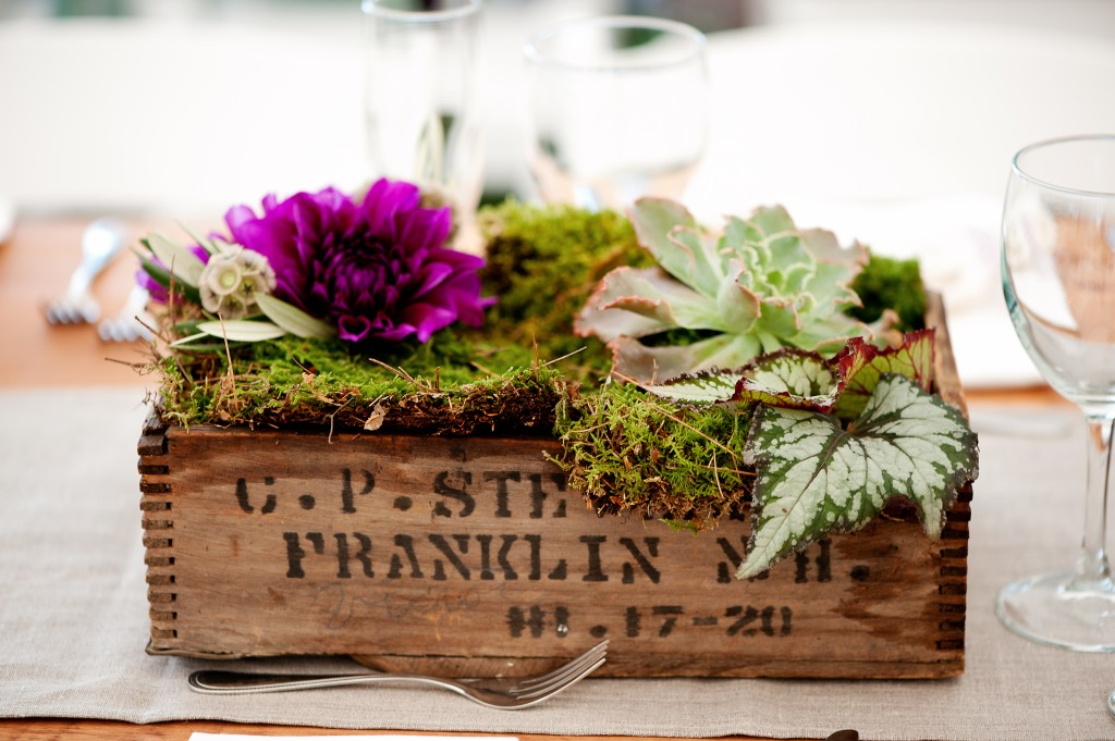 Rustic local wooden boxes with moss and dahlias.