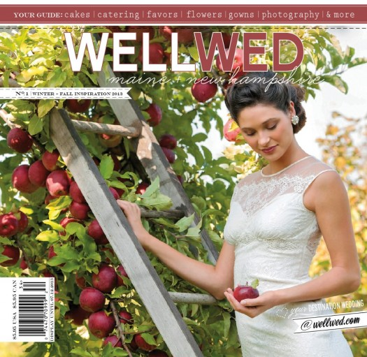 WellWed 2013 Cover