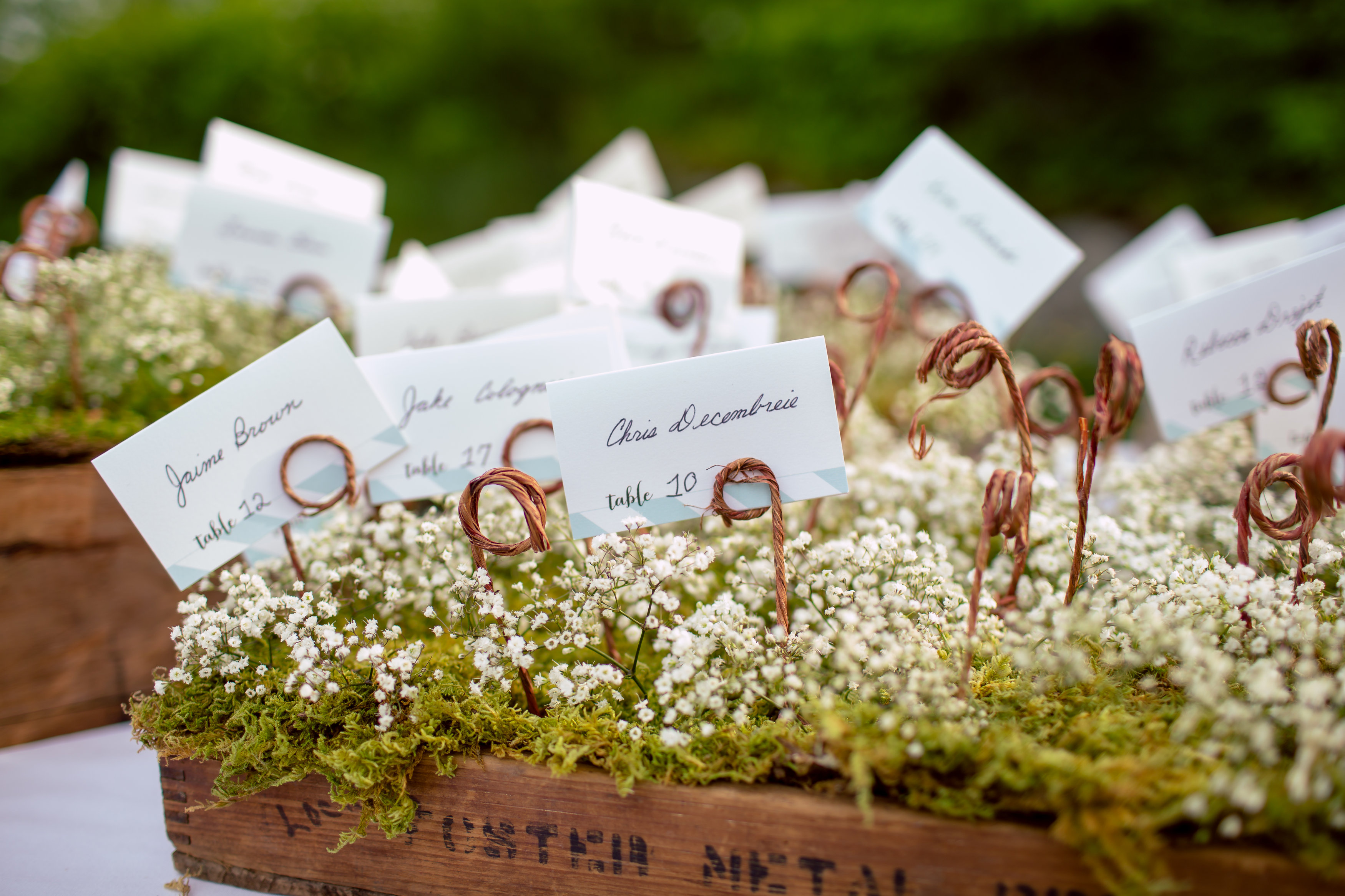 Maine wedding escort cards babies breath moss
